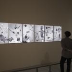 MD cavevas @ National museum of fine art Taiwan